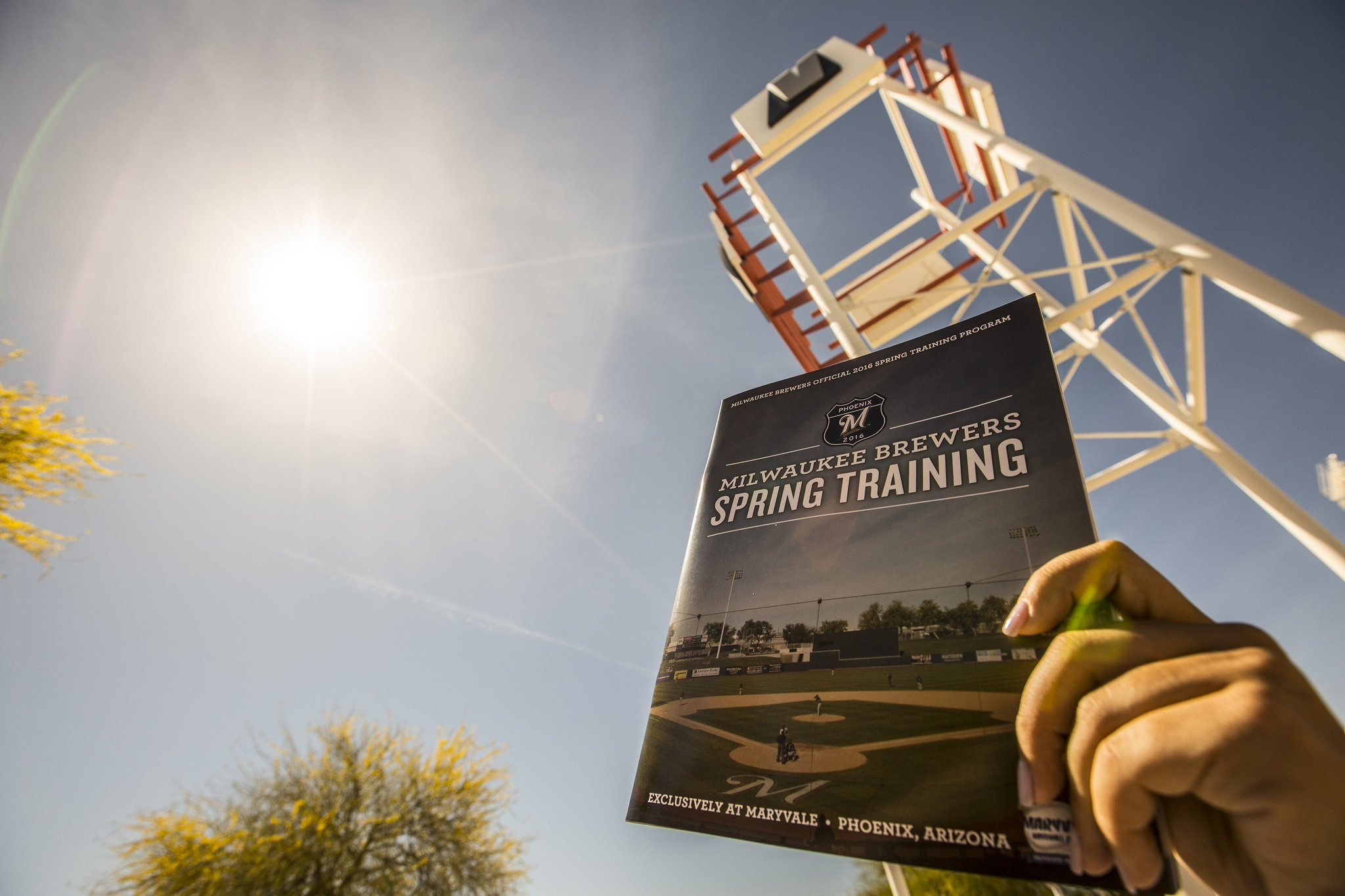 County wants Milwaukee Brewers' spring training in Tucson