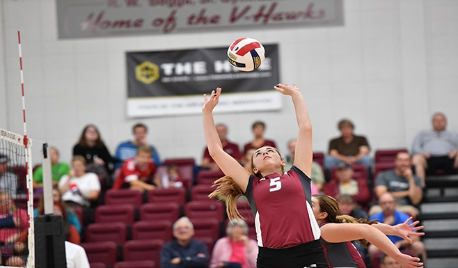 Men's volleyball, along with cheer and dance, coming to Viterbo