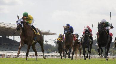 Horse racing AP